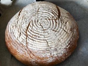 chleba-z-drozdi